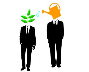 Cómo crear un buen mentoring program para empresa